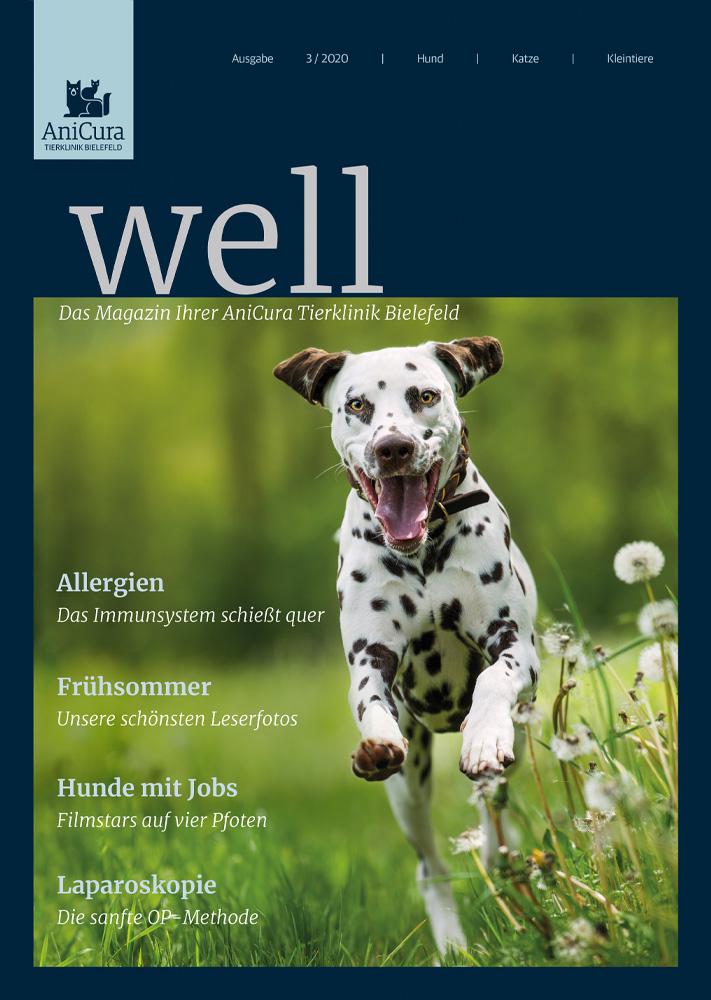 Tierklinik Bielefeld Magazin Ausgabe 3